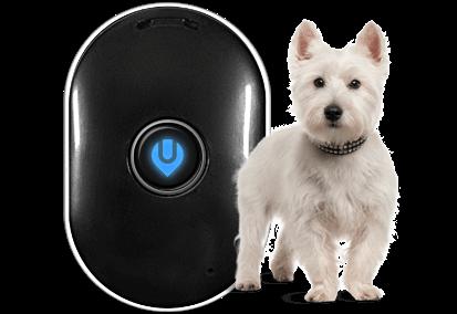 UBEE CITY GPS DOG TRACKER