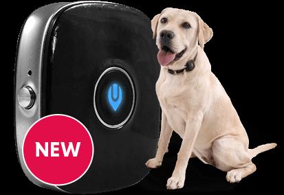 4G GPS DOG TRACKER